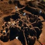 Giant-Ant-Hill-Megalopolis-Discovered-In-Brazil-1