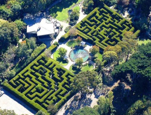 Ashcombe maze 1