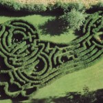 The Imprint maze