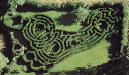 The Imprint maze