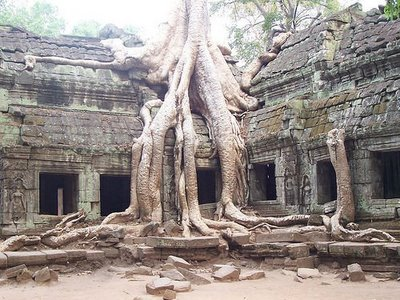 Angkor Wat Cambodia 2 10 of the Coolest Abandoned Places In The World as seen on CoolWeirdo.com