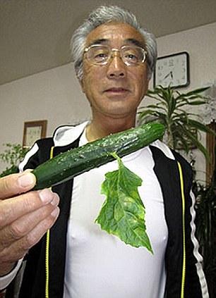 Fukushima mutant cucumber