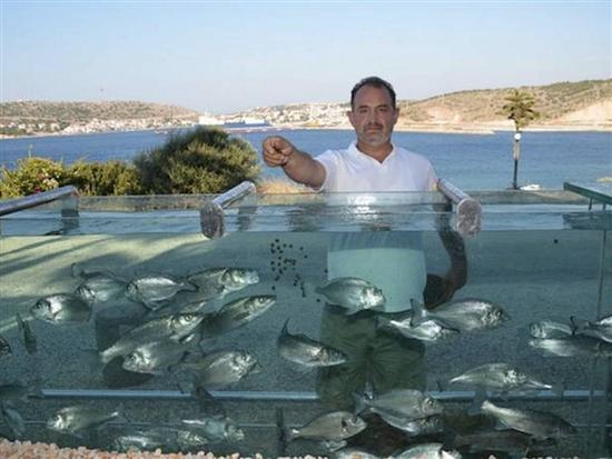 turkish aquarium fence 5