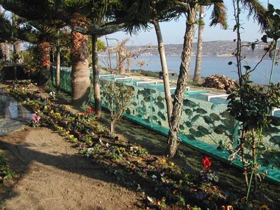 turkish aquarium fence 7