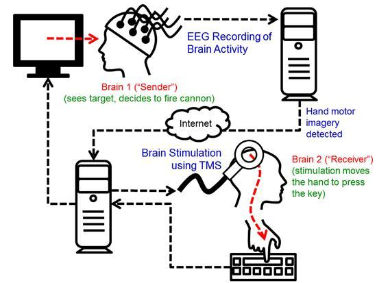 brain to brain interface