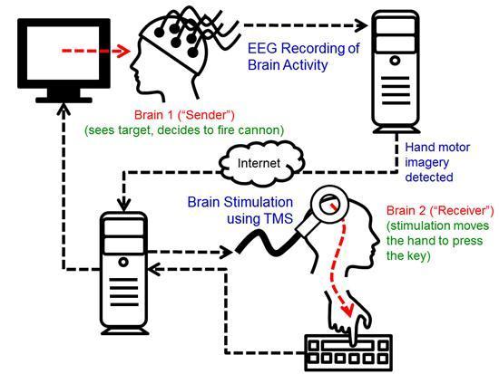 brain to brain interface