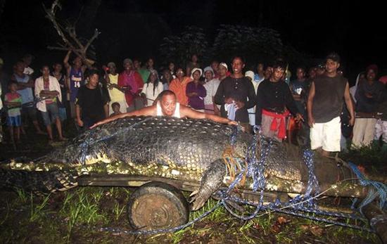 biggest croc phillipines