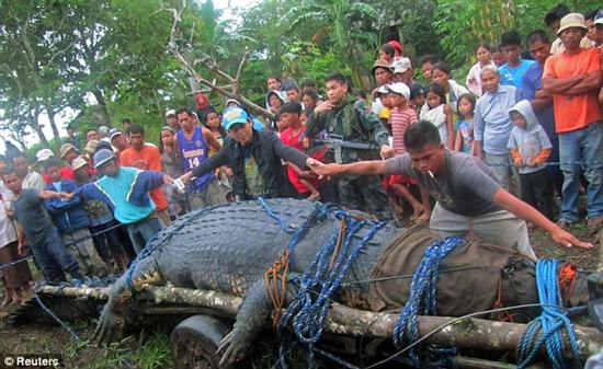 worlds biggest croc 1