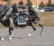Boston Dynamics WildCat robot 61 175x150