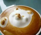 foam art bear coffee 175x150
