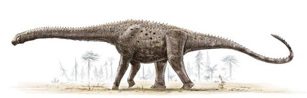 biggest dinosaur argentinosaur