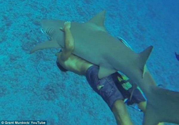 grant-murdock-hugging-shark-man