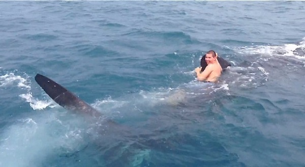 whaleshark riding teenager