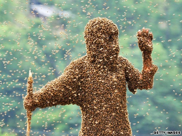 bee suit covers man