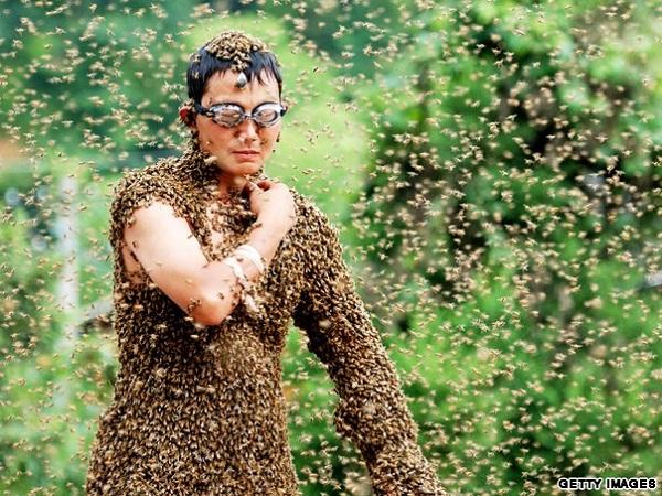 bees on man