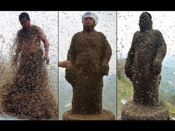 man entirely covered bees