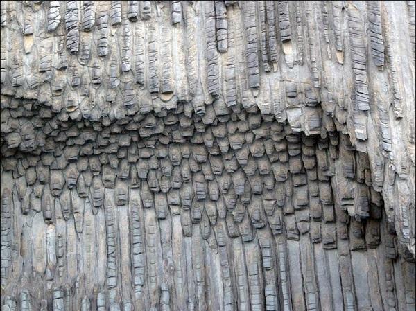 los organos wall