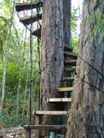 Free Spirit Spheres staircase