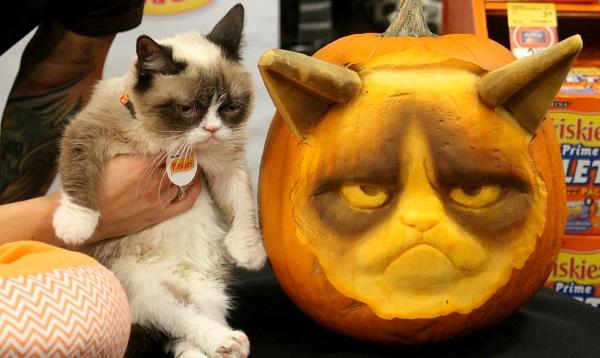 grumpy cat carvings