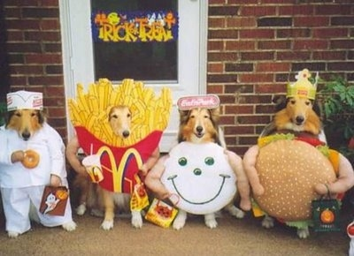 happy meal dog costumes