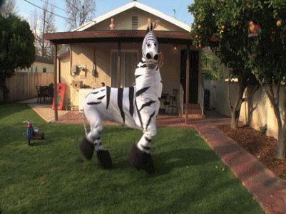 zebra-halloween-costume