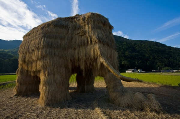 Giant Mammoth - Musashino University - 2010