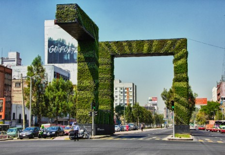 Large Vertical Gardens 3 Mexico 2012