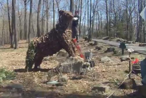 The Bear - Ben
