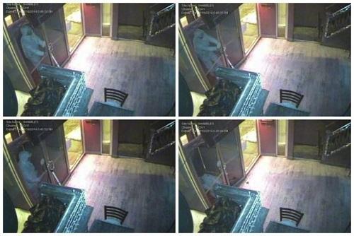 dumb robber pulling door