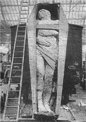 giant irish fossil