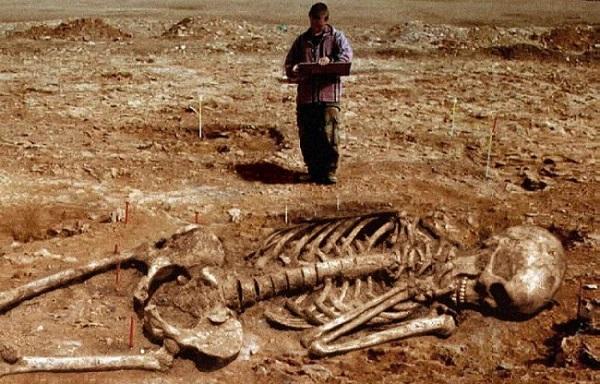 wisoncins giant skeleton