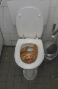 a98968 found in toilet 2 toilet 194x300
