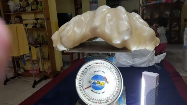 biggest heaviest pearl in the world