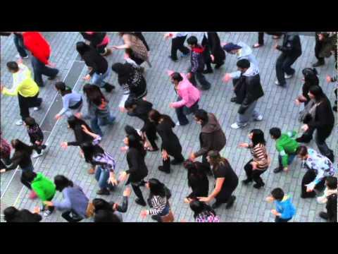 birmingham foji pumbeeri big flash mob