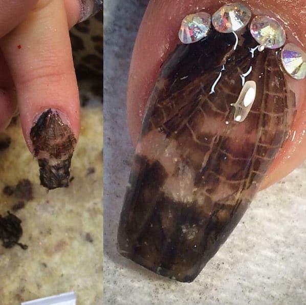 praying mantis wings nail art design